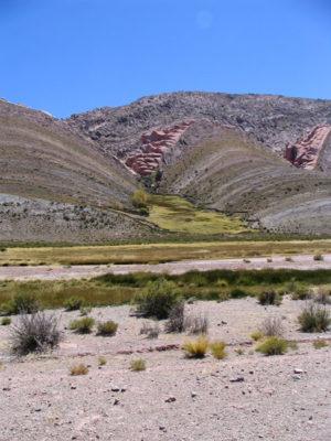 Аргентинская пуна в окрестностях Tres Cruces