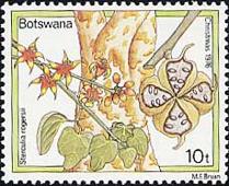 S. rogersii (Ботсвана, 1976)