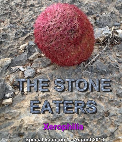 """""""Едят"""" ли кактусы камни? Часть 2"""