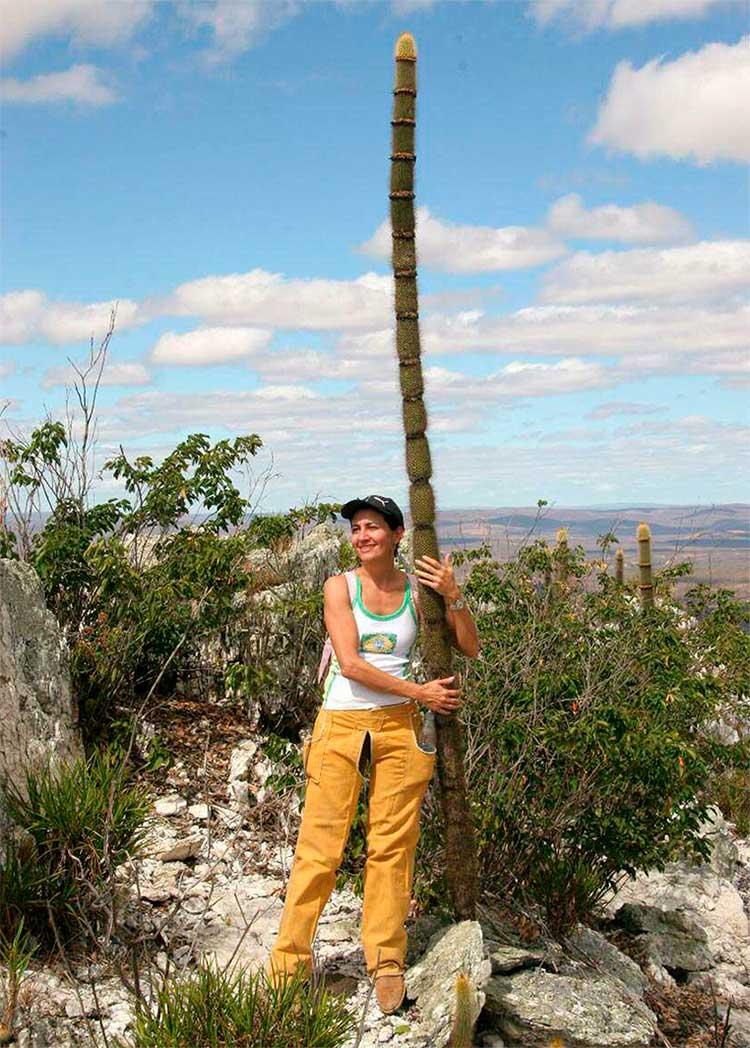 Марилан Коэльо с Arrojadoa marylanae растущей на кварцевой гряде горы Серра-Эскура.