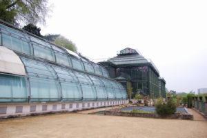 БОТАНИЧЕСКИЙ САД JARDIN DES PLANTES (ПАРИЖ, ФРАНЦИЯ)